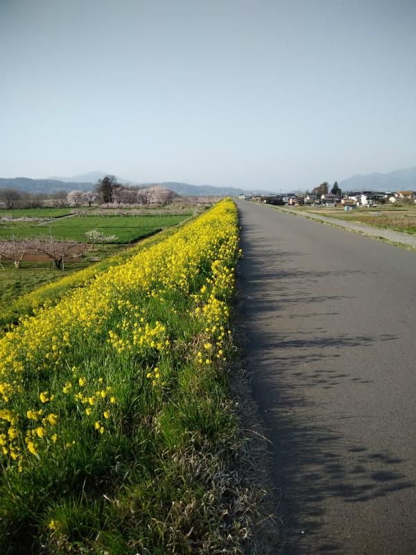 須坂村山千曲川サイクリングロード