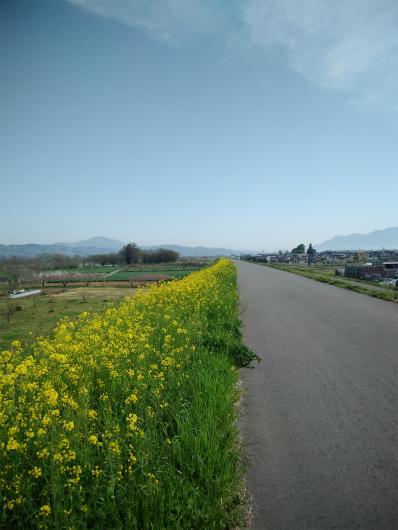 須坂村山堤防道路