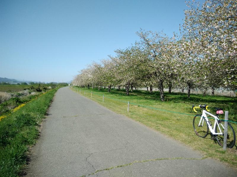 小布施堤防サイクリングロード