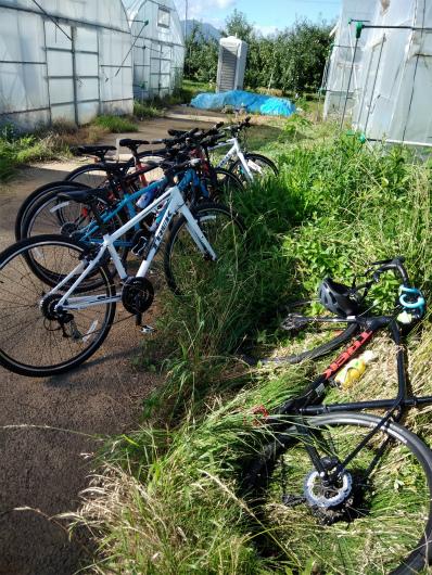 トマトハウス前のトレック自転車