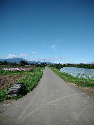 小布施畑の道