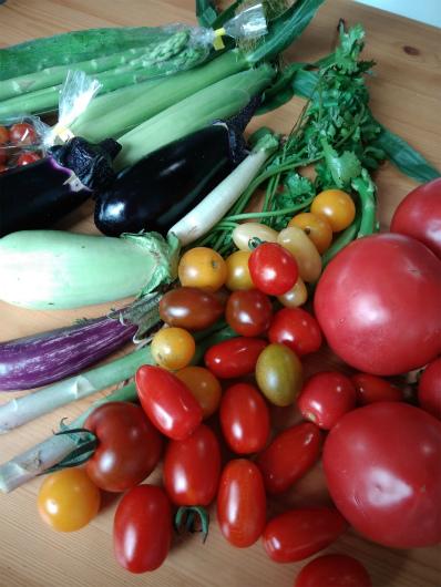 採れ立て野菜