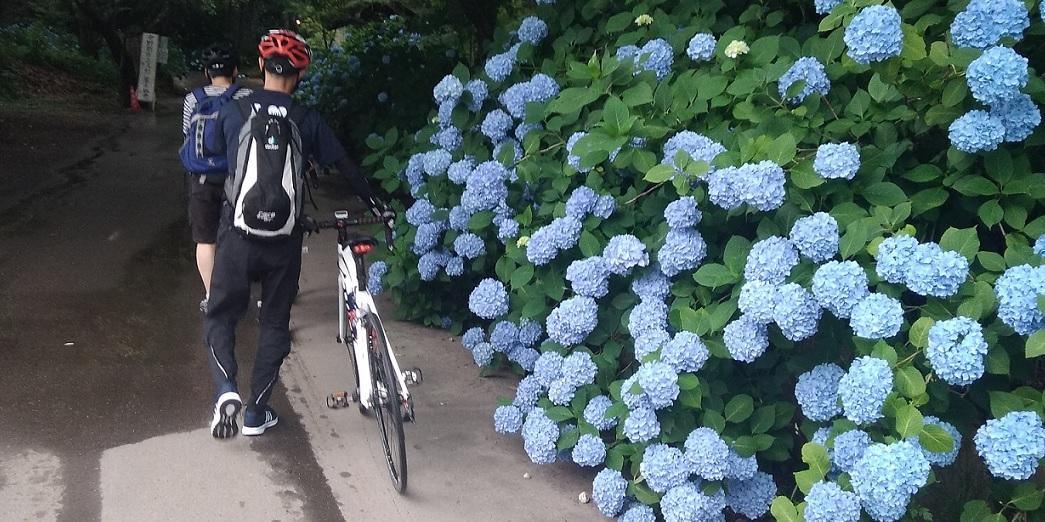 中野谷厳寺サイクリング