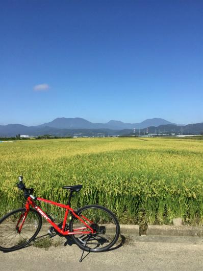 maaruモーニングサイクリングツアー