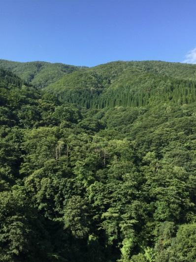 山田温泉から雷滝へ