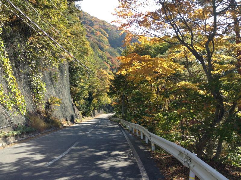 高山村松川渓谷紅葉