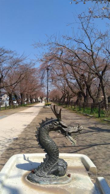 臥竜公園の龍