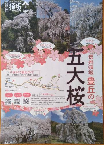須坂豊丘の五大桜
