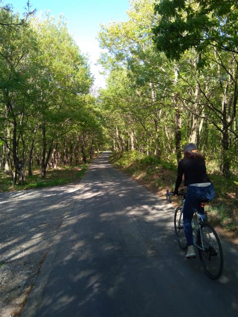 小布施でサイクリング