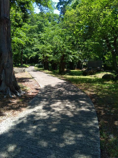 岩松院横の道