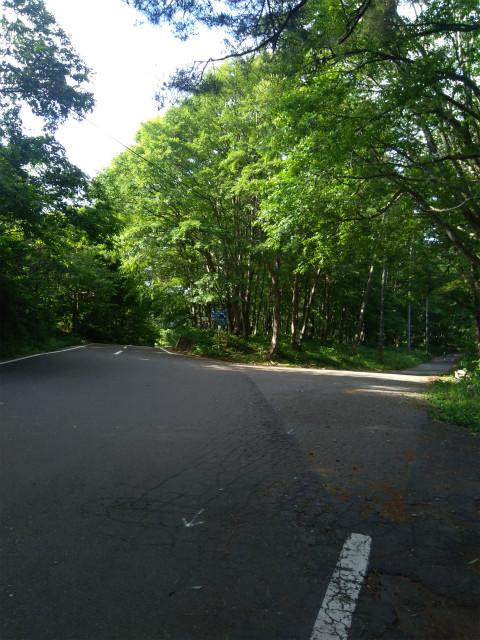 野尻湖周遊道路