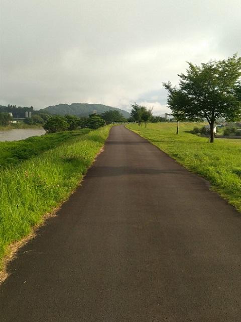 飯山千曲川堤防