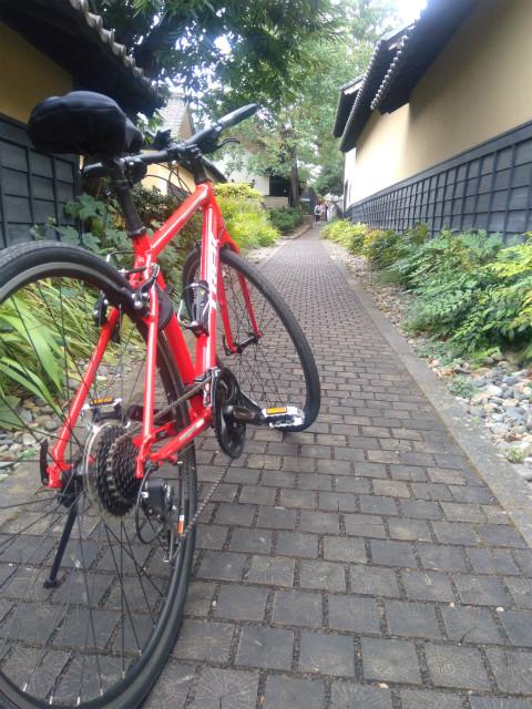栗の小径と自転車