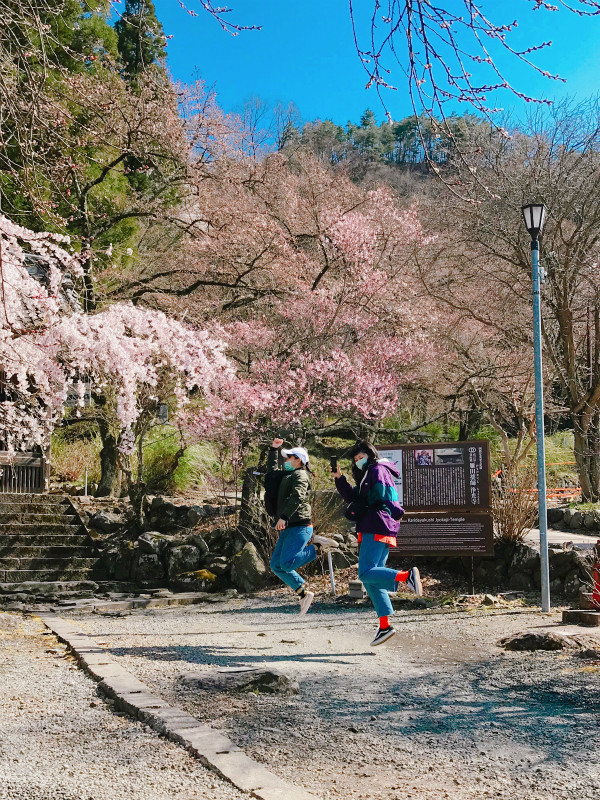 当店から自転車で10分ほど、浄光寺の桜の前でピョン