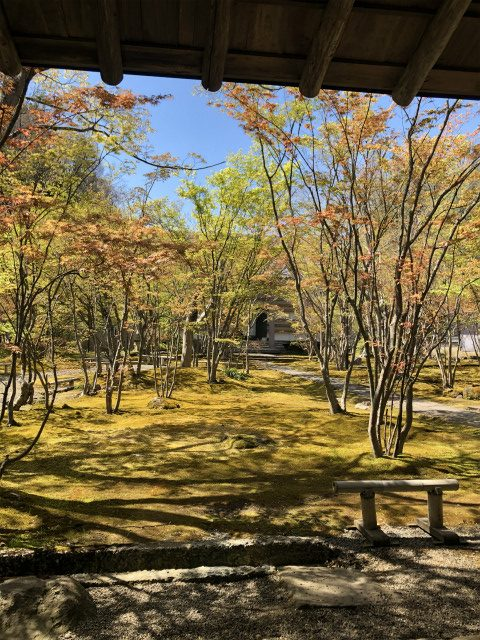 もみじと苔の寺 飯山