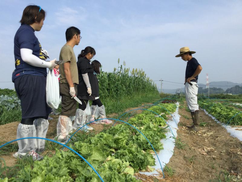 小布施の農家さんちで朝食ライド レタス畑