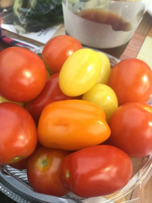 小布施の農家さんちで朝食ライド ミニトマト