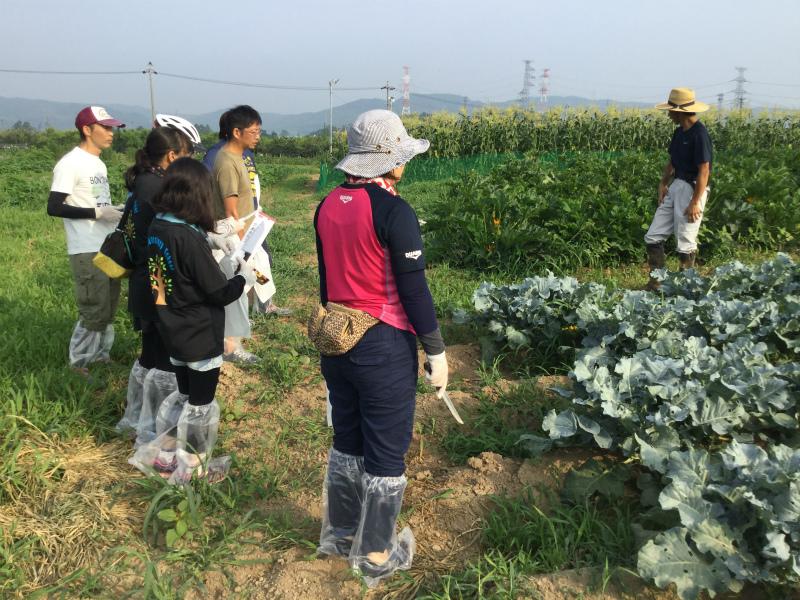 小布施の農家さんちで朝食ライド 野菜の説明を聞く