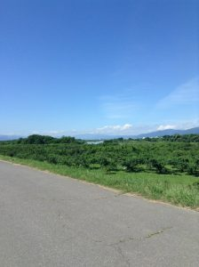 千曲川サイクリングロード 小布施