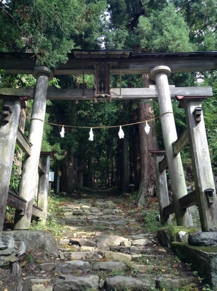 小菅神社杉並木参道入り口