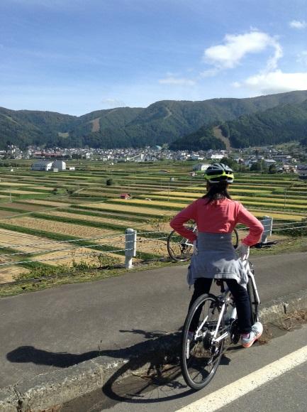 飯山巨木を巡るサイクリング 野沢温泉村