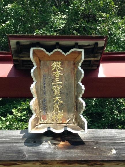 神戸の大イチョウ