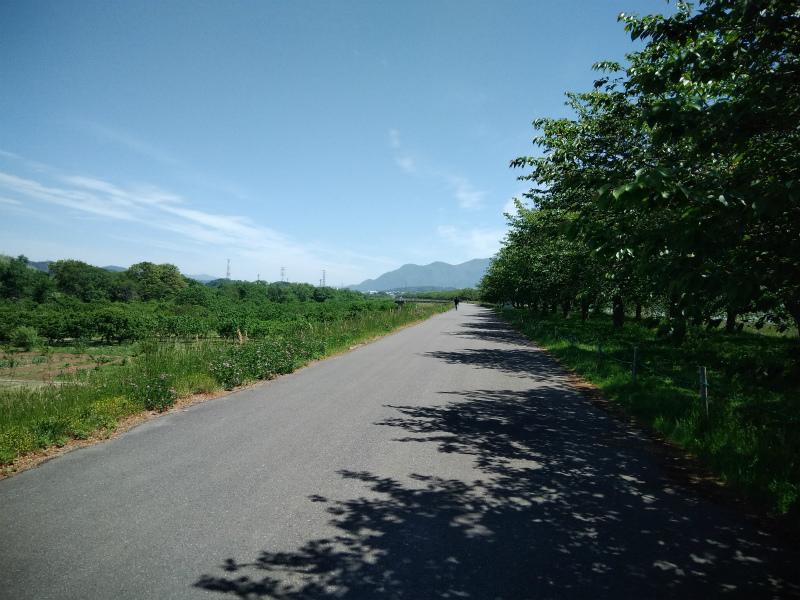 小布施千曲川サイクリングロード