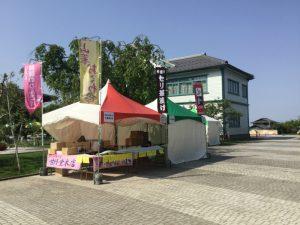中野一本木公園バラ祭り
