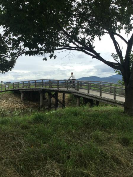 中野延徳田んぼ木製橋