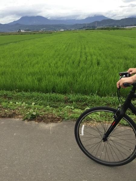 延徳田んぼサイクリング