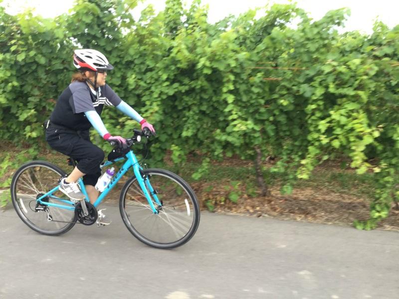 ワインブドウを見ながらサイクリング